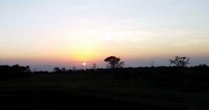 Sunrise at the Treetops Lodge, Kenya